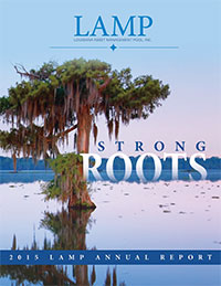 a report on louisiana financial statements Ppc library template report  personal financial statements for engagements to compile personal financial statements special purpose framework financial.